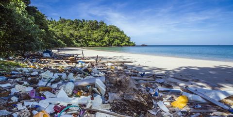 plastic litter on beach