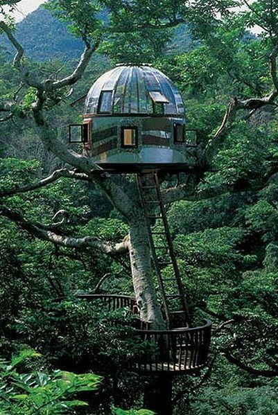 Beach-Rock-Treehouse-Japan