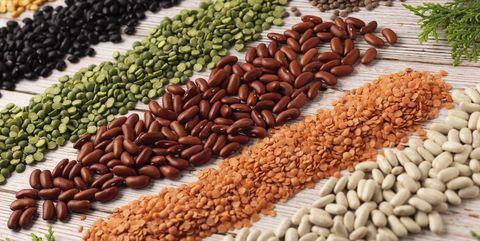 bean grain