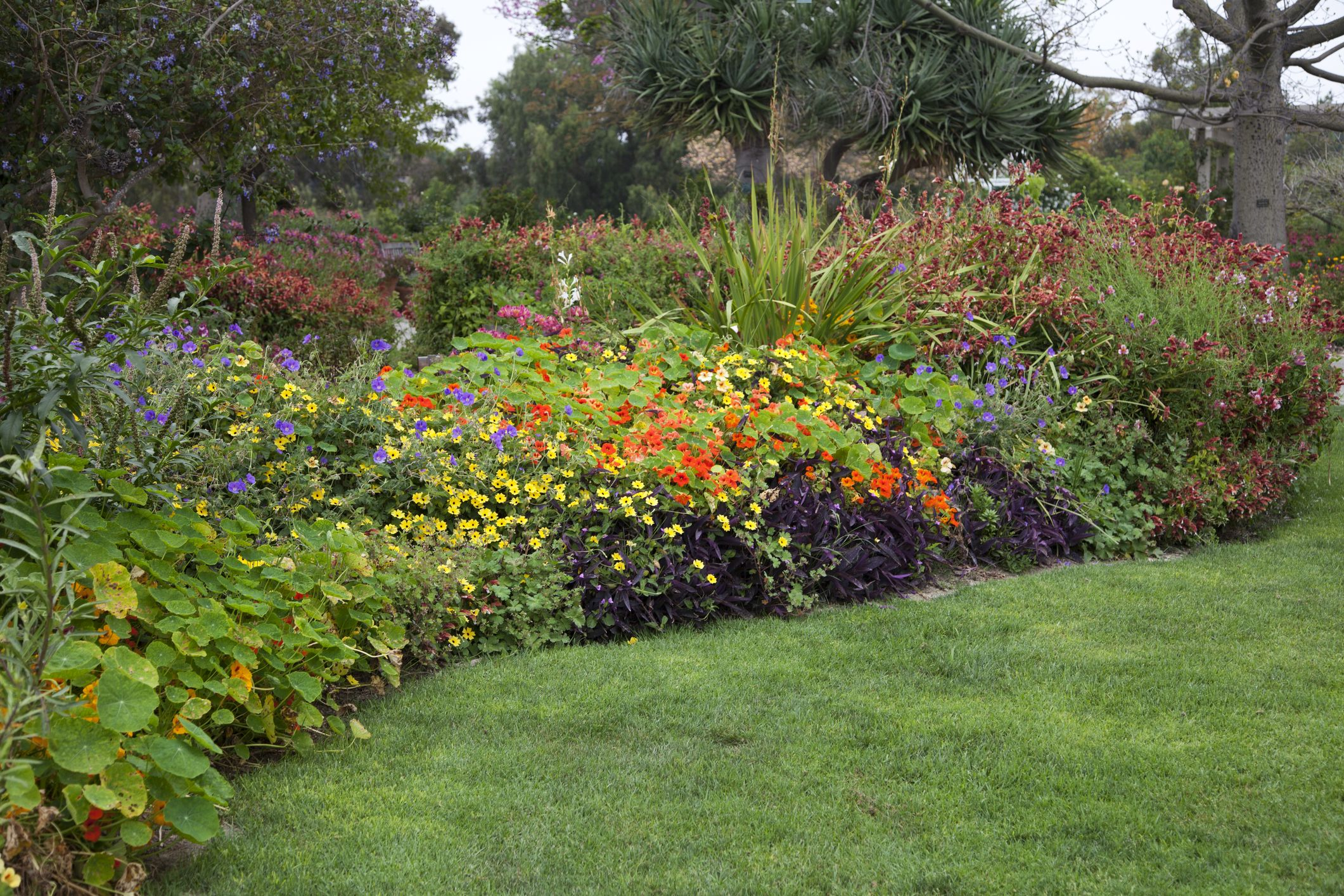 Beautiful Flower Garden   Flower Bed