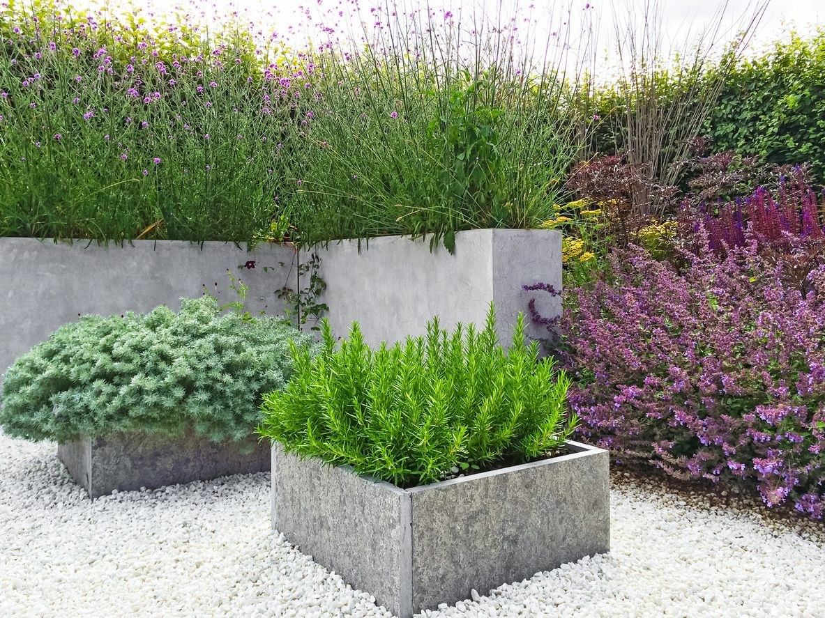 Beautiful Garden With Concrete Planters