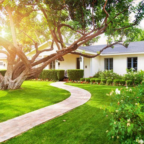 Ngôi nhà đẹp với sân cỏ xanh