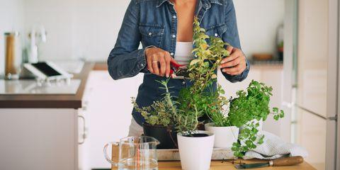 Beautiful mixed race woman gardening.
