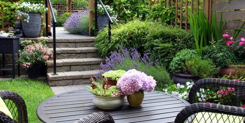 small townhouse perennial summer garden - Small Garden Ideas On A Budget