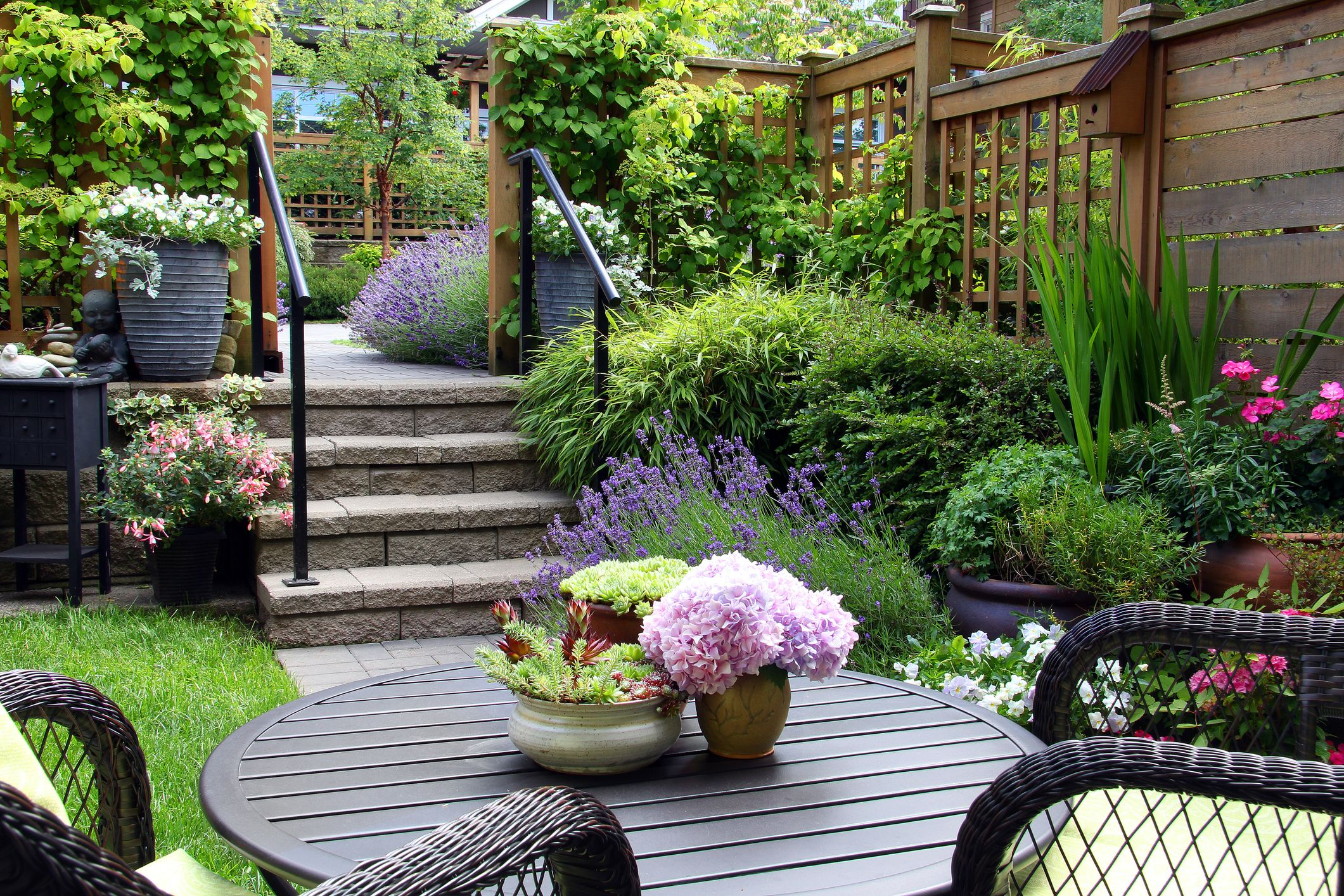 Delightful Small Townhouse Perennial Summer Garden