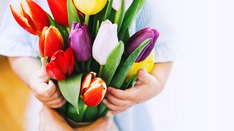 tulpen in kinderhand