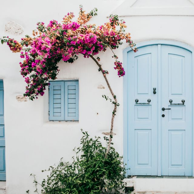 beautiful turqoise door and bouganvillae in naoussa,greece