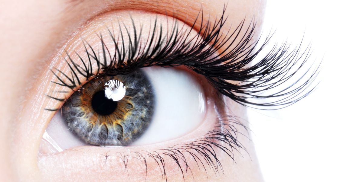 How To Grow Eyelashes - Lash Serums And Ingredients For Fuller Lashes