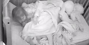 Bebé duerme con su perro pitbull