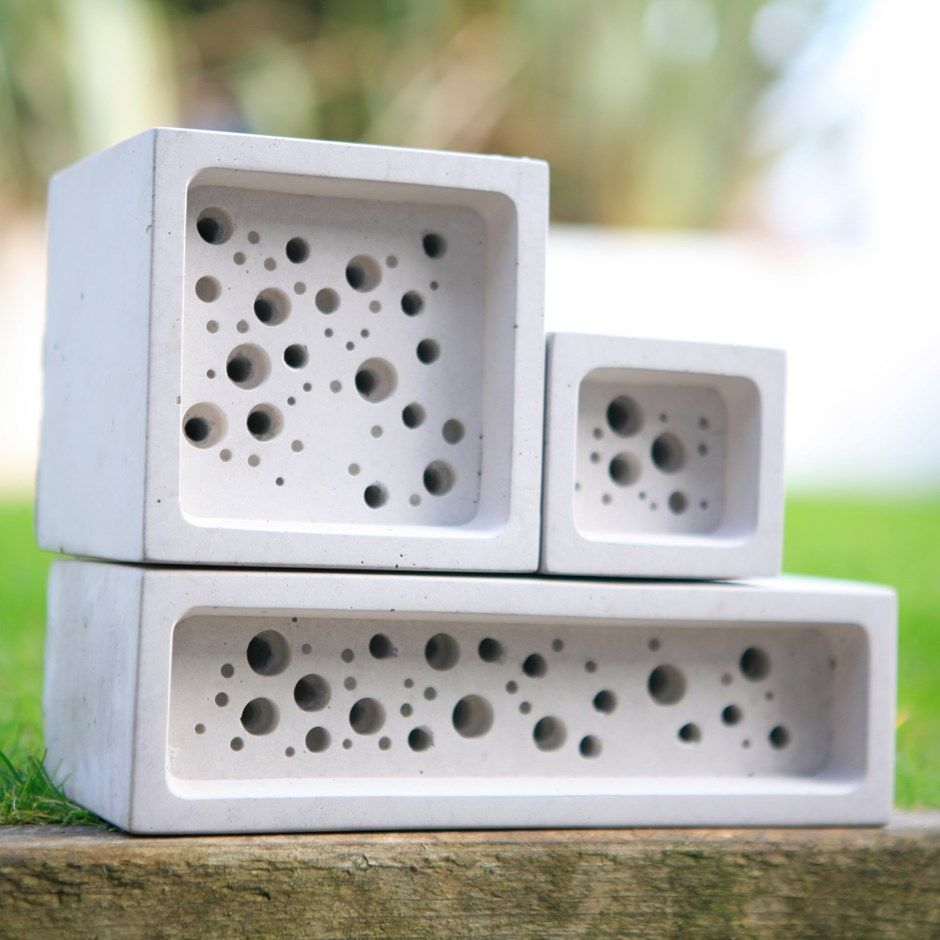 Wildlife officer adds a 'bee brick' to his home to help save Britain's endangered bees