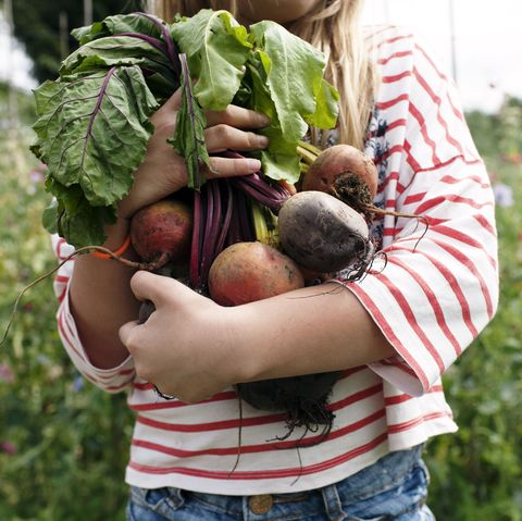 what vitamins and nutrients does beetroot contain
