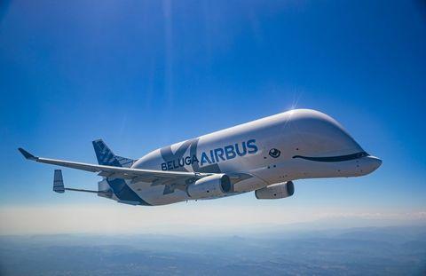 beluga airbus xl flies through the skies