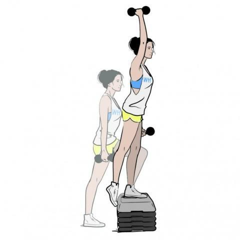 Shoulder, Exercise equipment, Standing, Weights, Joint, Arm, Leg, Sports equipment, Muscle, Illustration,