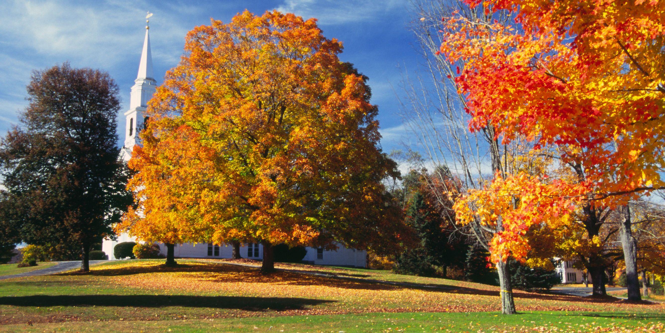Berkshires, MA - fall foliage