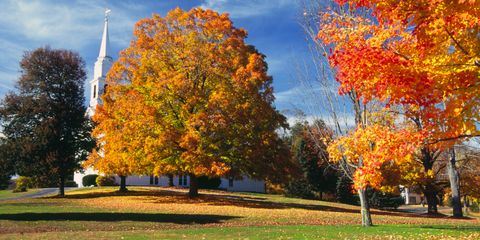 Berkshires, MA - fall foliage