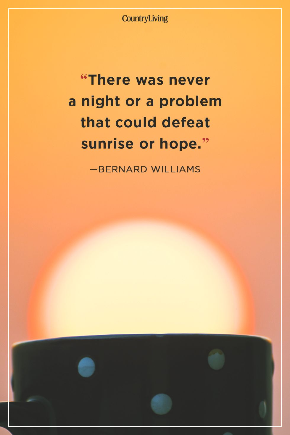 bernard williams good morning quote