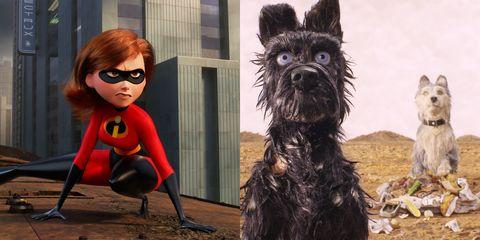 Dog, Canidae, Dog breed, Miniature schnauzer, Companion dog, Snout, Scottish terrier, Schnauzer, Glasses, Fictional character,
