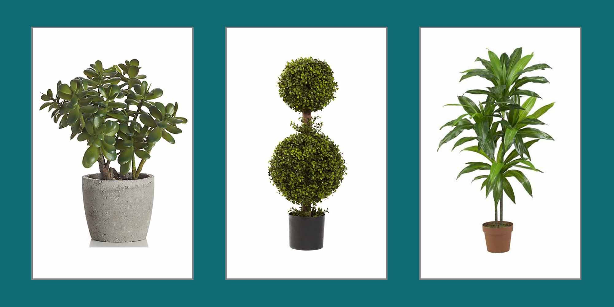 10 Best Artificial Plants Stylish Fake Plants