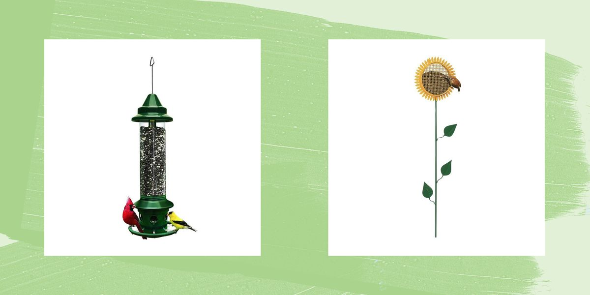 best bird feeders 1594422594 jpg?crop=1 00xw:1 00xh;0,0&resize=1200:*.'