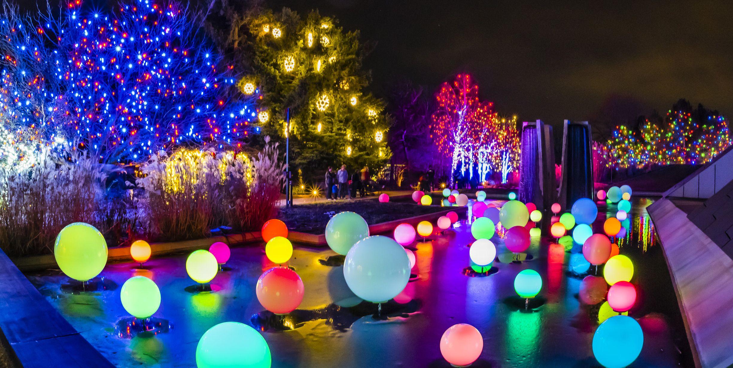 best christmas light displays denver colorado blossoms of lights