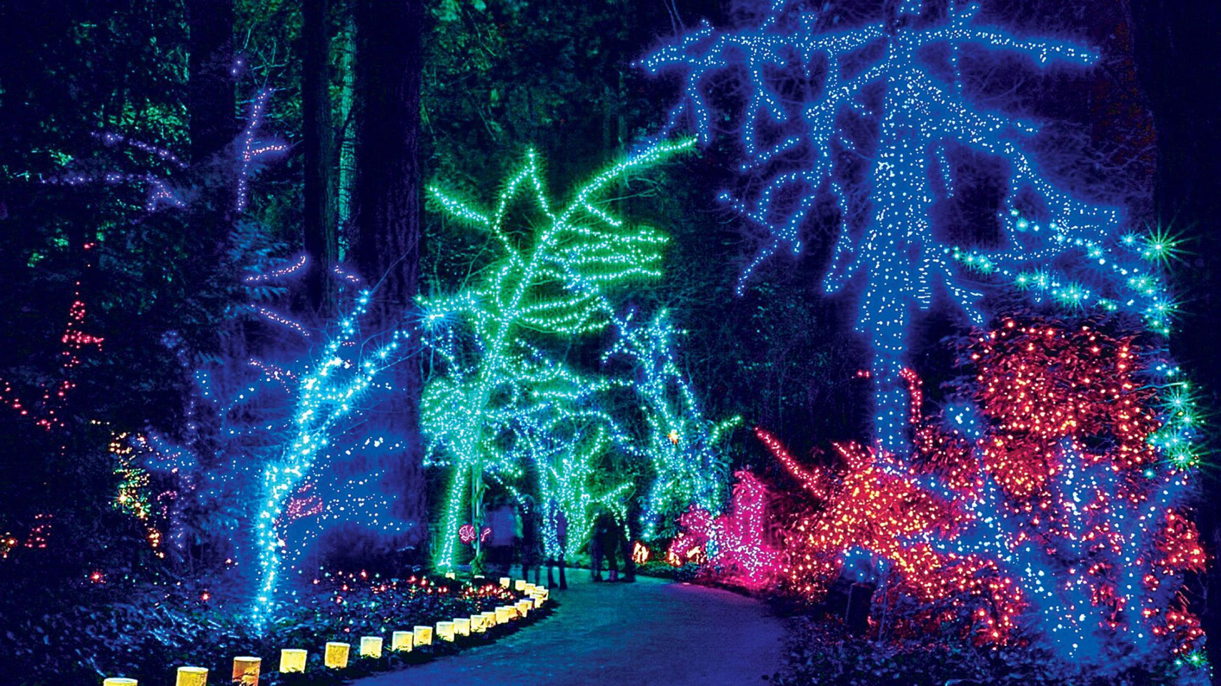 Best Christmas Lights Near Me.25 Bbest Christmas Light Displays In America Holiday Light