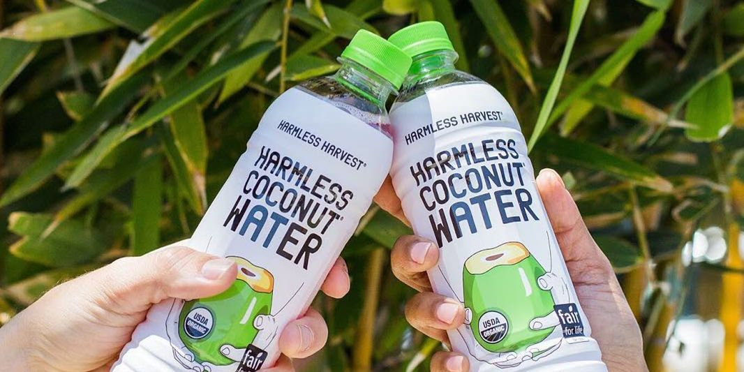 Ultra Hydrating Coconut Water Is the Only Hangover Remedy You Need