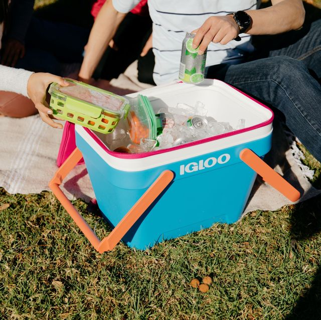 igloo picnic basket cooler in grass