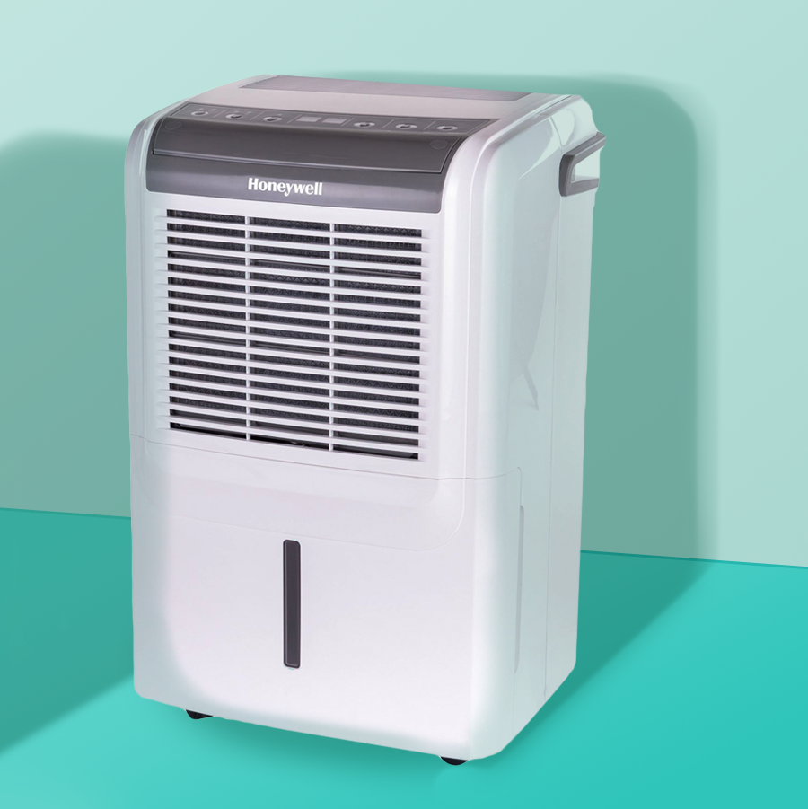 The Best Dehumidifiers, According to Experts