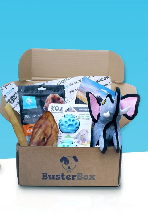 Dog box subscription services