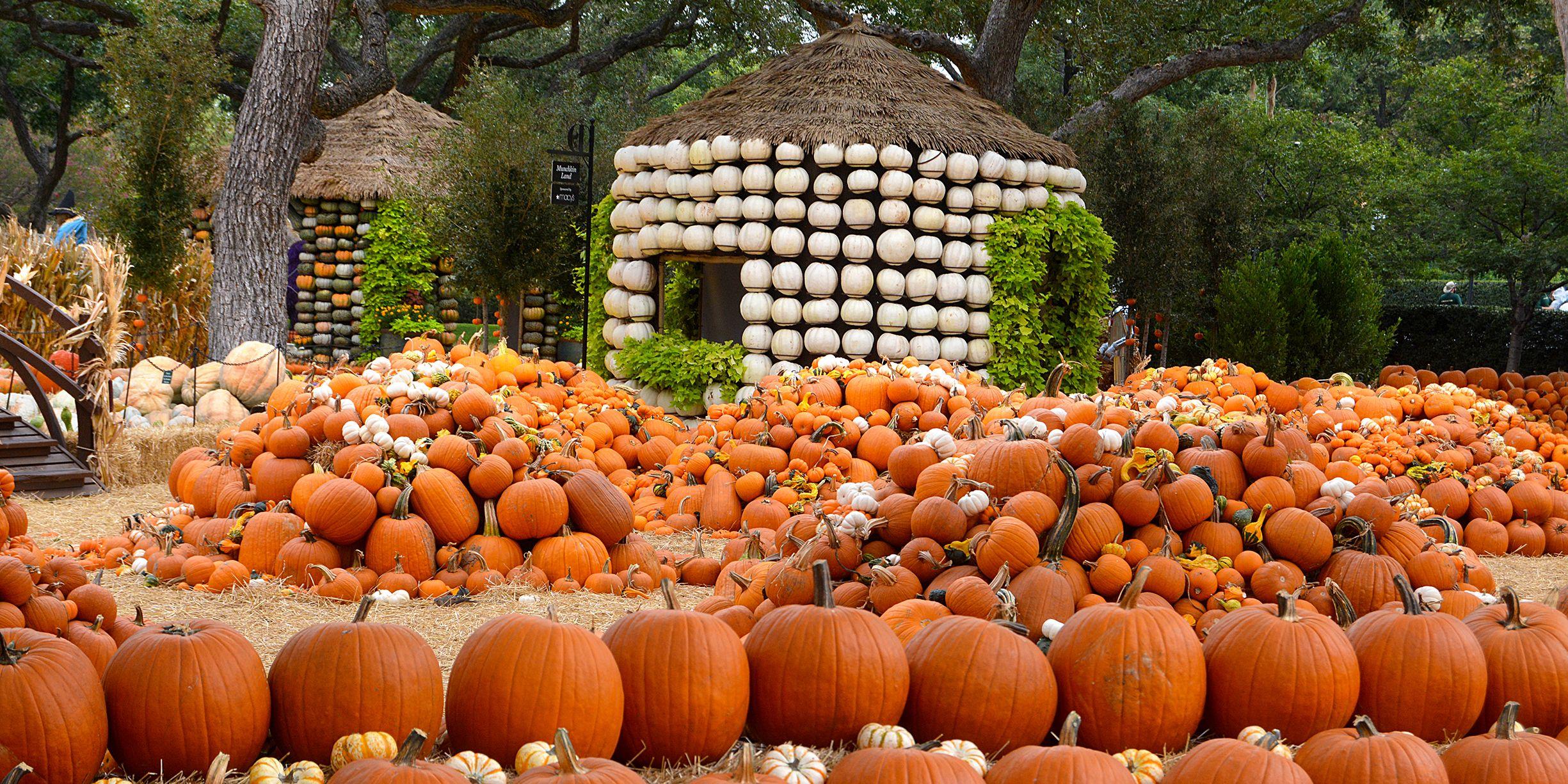 best fall festivals