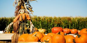 best fall festivals