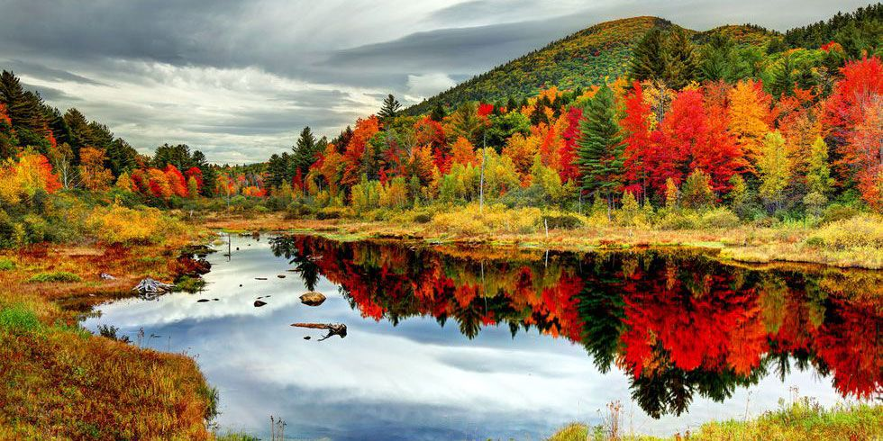 20 Beautiful Fall Foliage Pictures Around The World