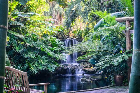 best florida gardens marie selby veranda
