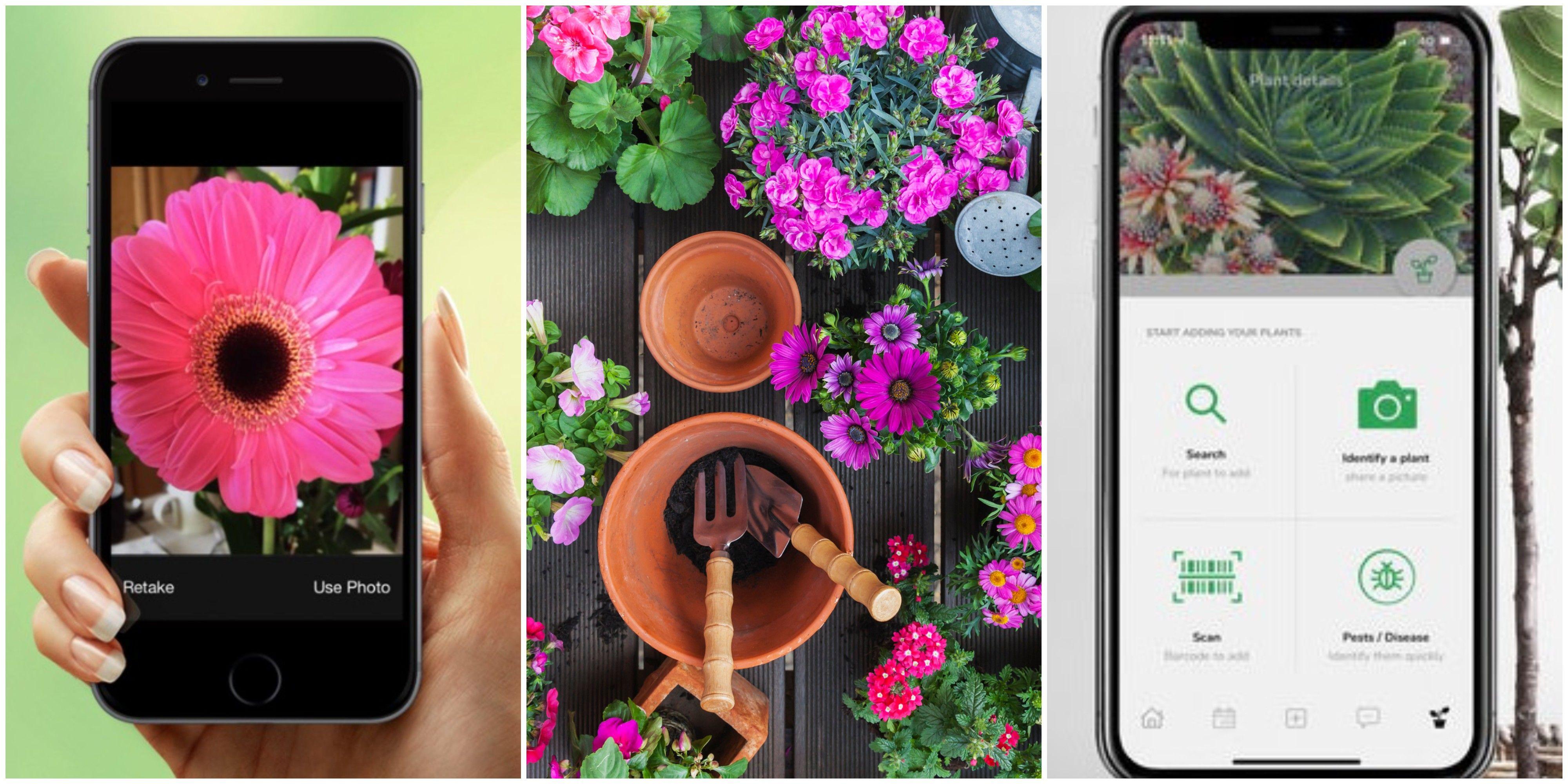 10 Top Gardening Apps To Download Now – Best Gardening Apps