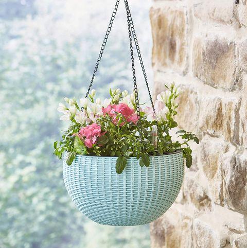 Gardening gift guide under £35