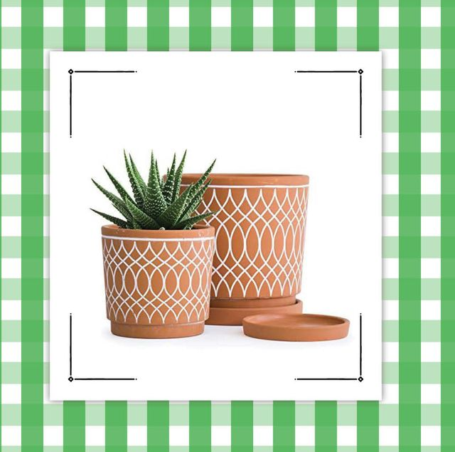 two plant pots and a garden journal