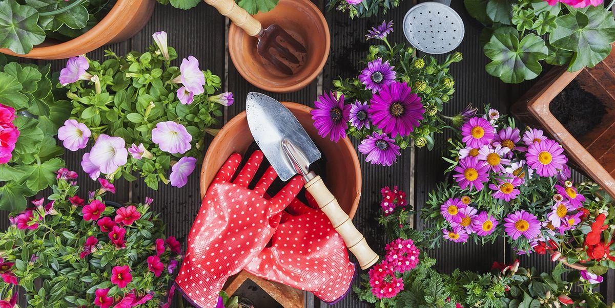 20 Best Garden Accessories Cute Gardening Tools Supplies