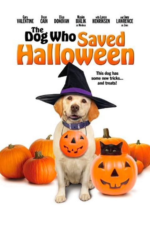 47 Best Halloween Movies For Kids - Family Halloween Movies-5646