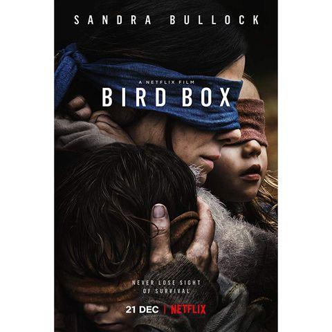 best horror movies on netflix - bird box
