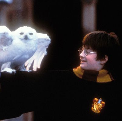 Best Kids Movies - Harry Potter