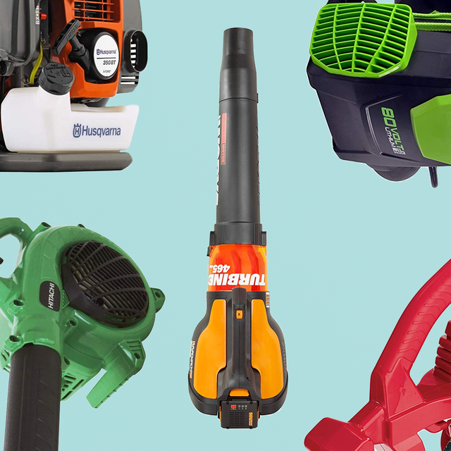 6 Best Leaf Blowers To Buy Of 2020 Leaf Blower Reviews