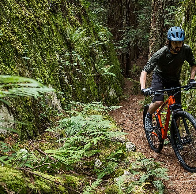 Best Mountain Bikes >> 9 Best Hardtail Mountain Bikes Of 2019 Mountain Bikes Under 1000