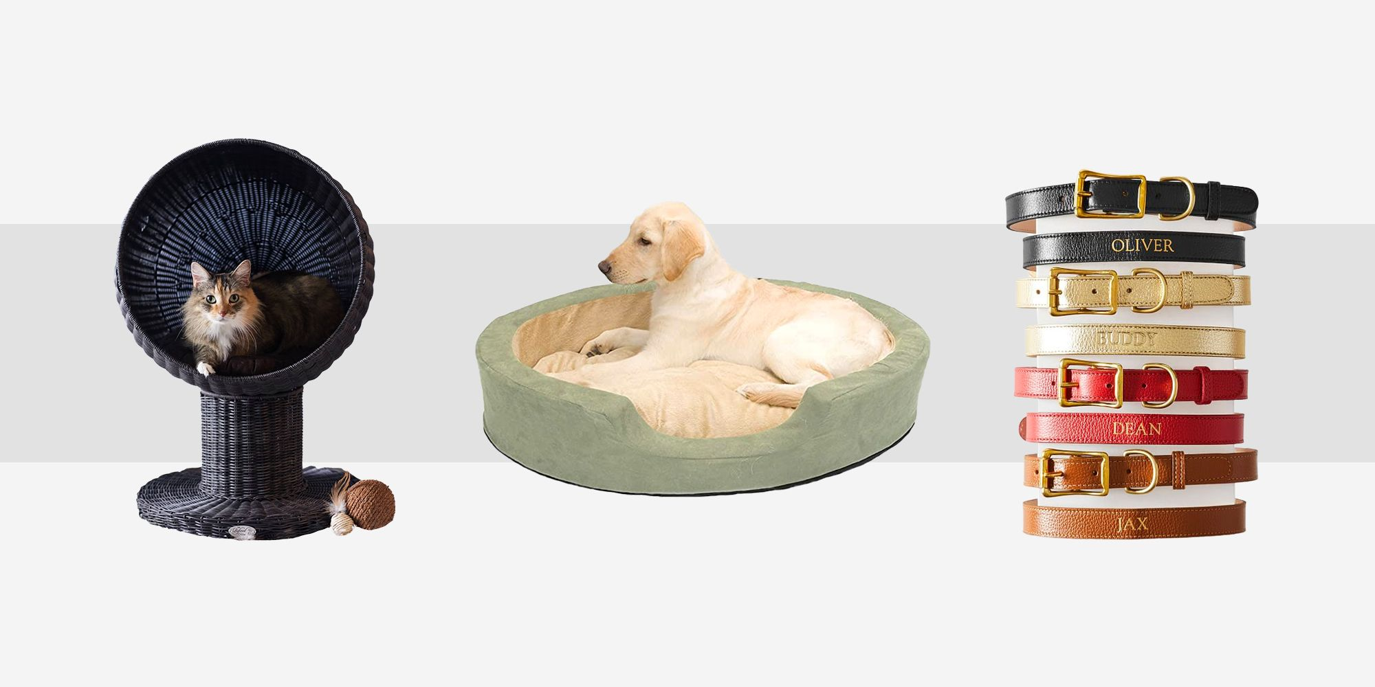 Picture of: 20 Best Pet Gifts For 2020 Unique Gifts For Dogs Cats