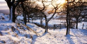 Snow covered landscape, High Peak, Derbyshire, England, UK