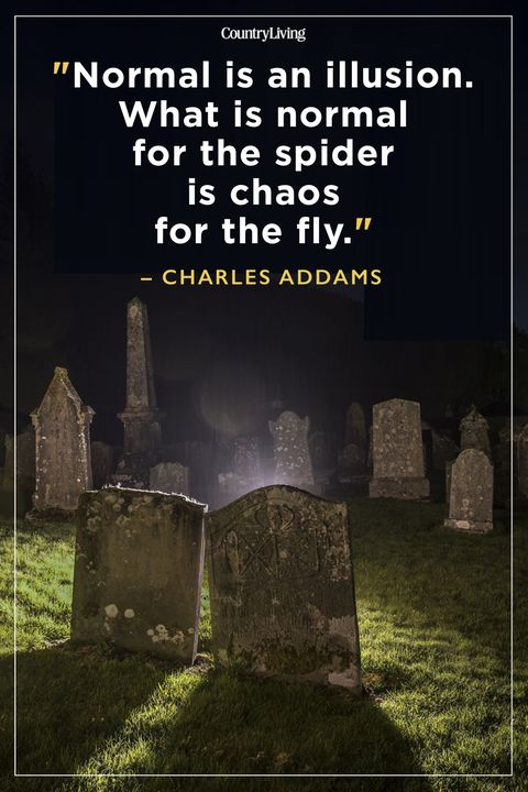 Best Scary Quotes Charles Addams