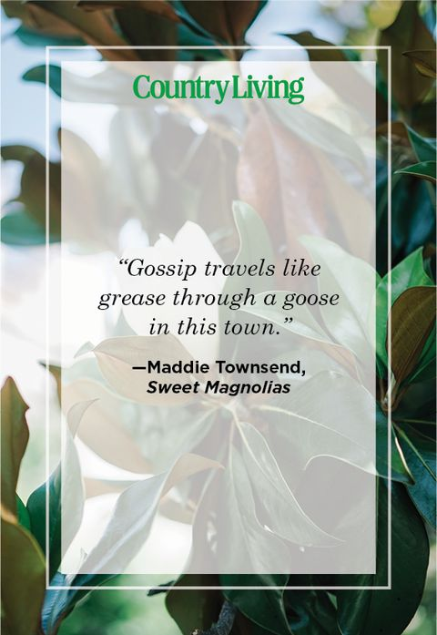 maddie townsend quote from sweet magnolias on netflix