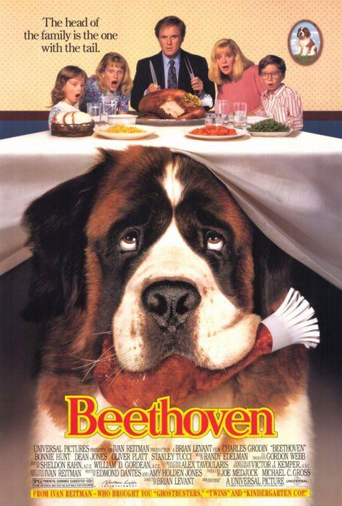 best thanksgiving movies on netflix