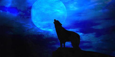 Best Werewolf Movies - Scary Halloween Movies