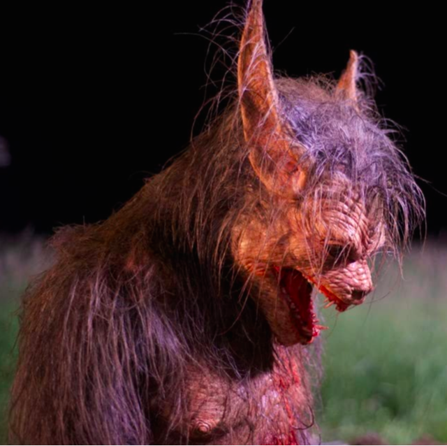 17 Werewolf Movies to Watch Next Time There's a Full Moon