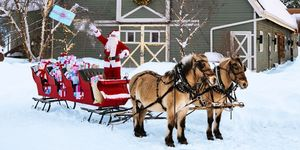 best winter activities sleigh ride